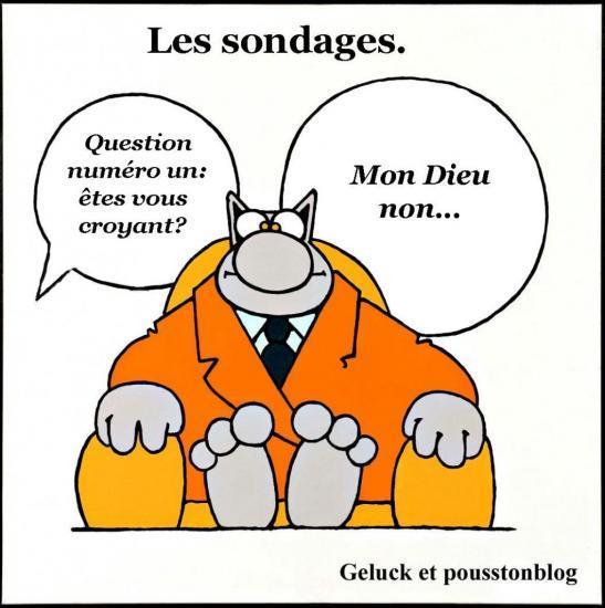le-chat-de-geluck-vedette-des-encheres-bd-a-drouot-montaigne-04-1.jpg