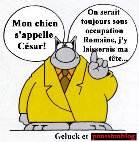 le-chat-p-geluk-thumbnail-2.jpg