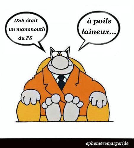 Mammouth poil laineux - DSK - Tranche de vit - humour - ephemeremargeride